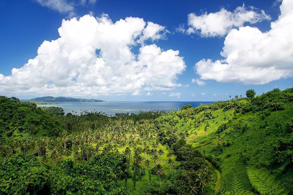 هتل های محیط زیستی8-Partake In Preservation In Fiji