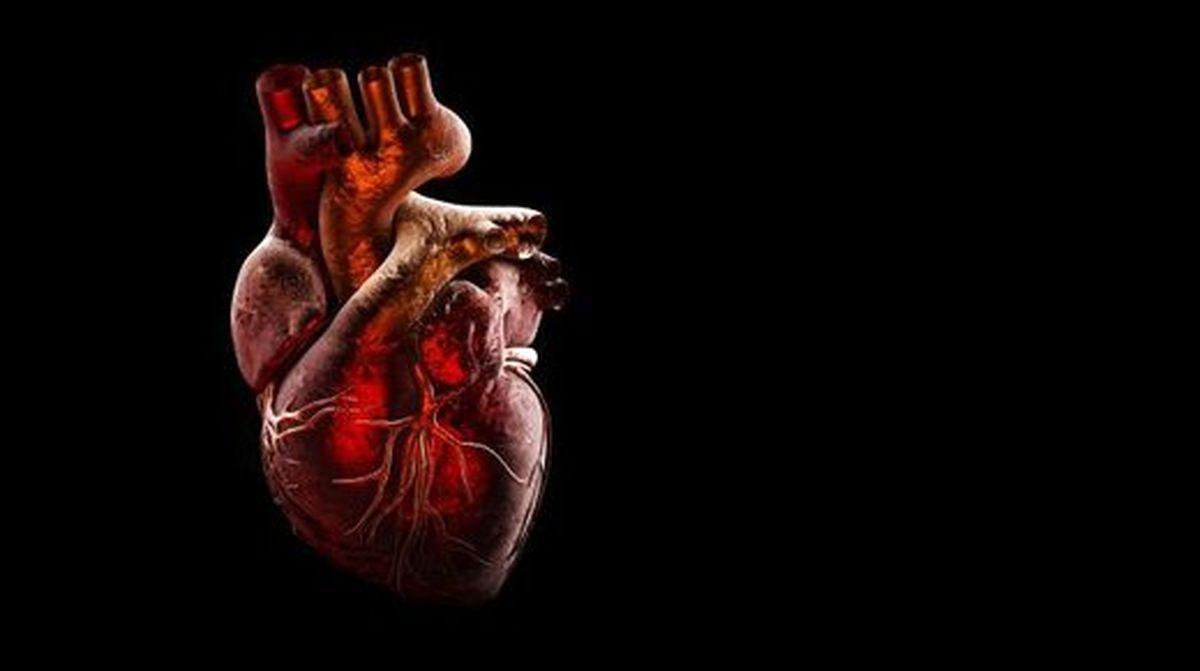ارتباط چربی دور قلب با خطر نارسایی قلبی
