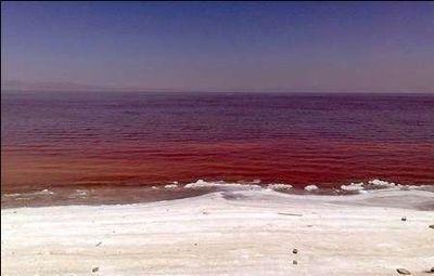 جلبک کشند قرمز آب شهر چابهار و کنارک را قطع کرد