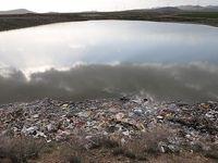 دفع زباله در مسیر آبهای سطحی تاکستان +عکس