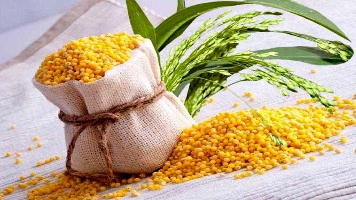 دانه پرفایده برای دیابتی ها! + عکس