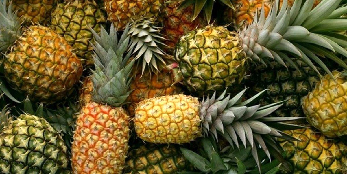 آناناس از فهرست قیمتگذاری خارج شد