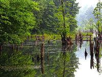دریاچه ممرز کجاست؟ +عکس