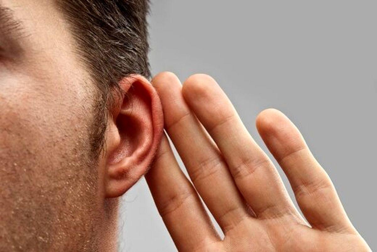 10دشمن عجیب گوشها را بشناسید