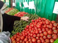 تولیدکنندگان دلیل گرانی میوه نیستند