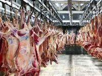17هزار تن گوشت آماده انتقال به کشور است
