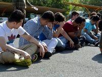 دستگیری اراذل، اوباش و مزاحمین نوامیس +تصاویر