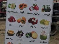 فروش میوههای خارجی در مناطق آزاد