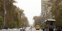 علت افزایش آلاینده ازن در هوای تهران بررسی میشود