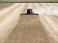 کمک ۴.۷میلیاردی آمریکا به کشاورزان صدمه دیده از تعرفهها