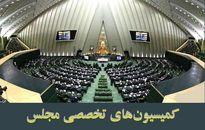 مخالفت کمیسیون امنیت ملی با طرح ممنوعیت استفاده از مدیران دارای تابعیت مضاعف