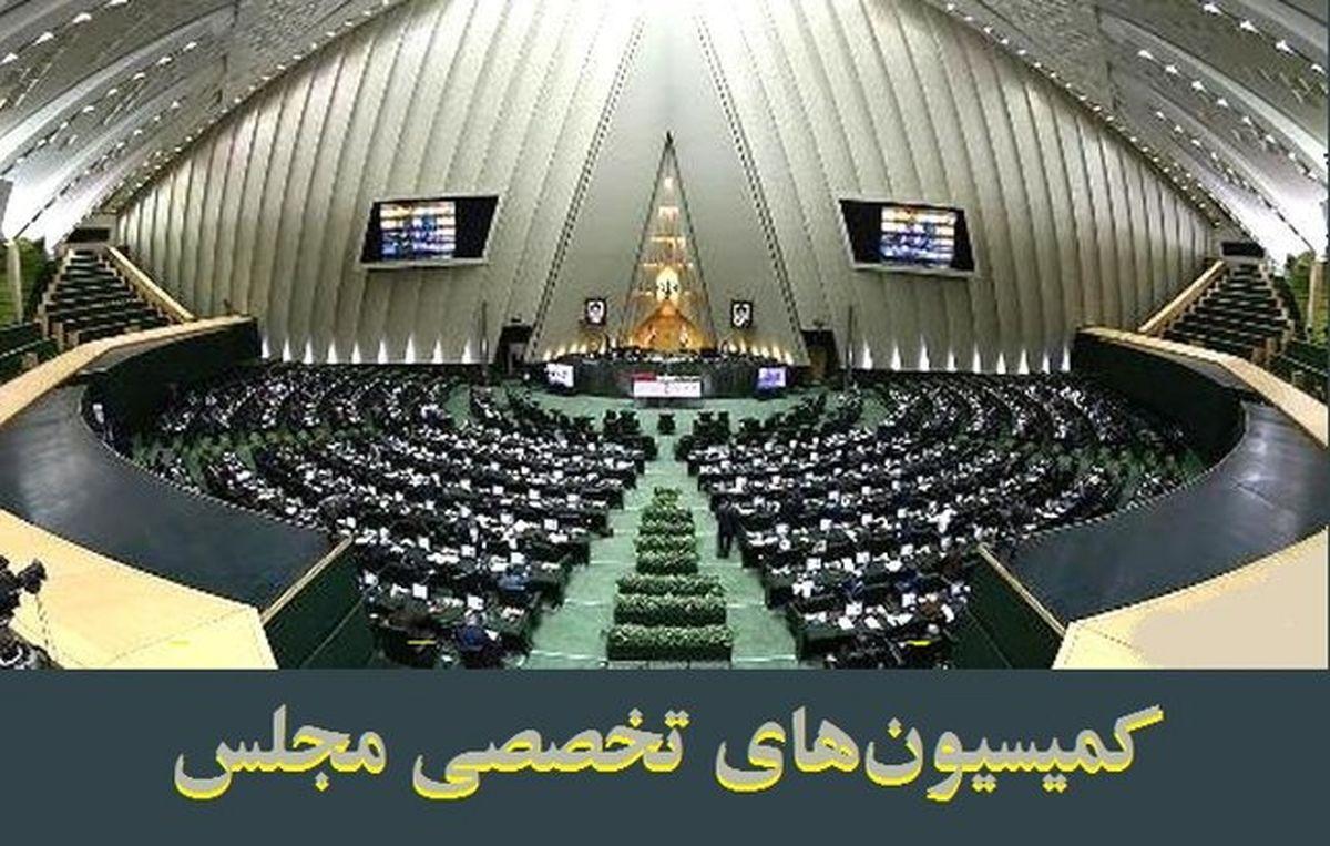 بررسی مالیات فعالان پتروشیمی روی میز مجلسیها/ کمیسیون عمران و انرژی این هفته میزبان وزیر نفت خواهند بود