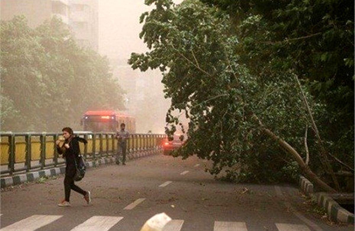 افزایش ابر و وزش باد شدید در تهران