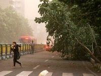 وزش باد شدید در اغلب مناطق کشور تا روز شنبه