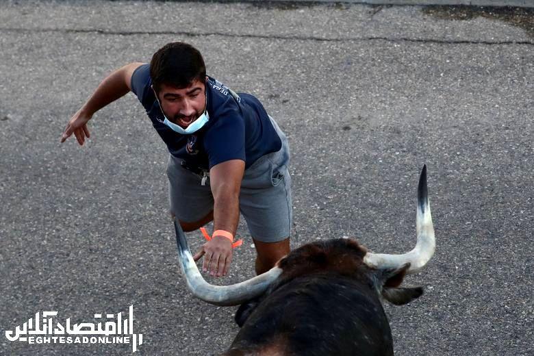 برترین تصاویر خبری هفته گذشته/ 19 شهریور