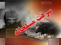 دستگیری عاملان سرقت مسلحانه خیابان ظفر