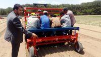 زنجیره کامل ماشینهای کشاورزی در مزرعه سبزیجات برگی و گیاهان دارویی راهاندازی شد