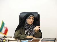 پهلوانی: «پدیده چسبندگی» مانع تغییر نسل در مدیران دولتی است