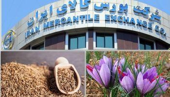 رونق معاملات آتی با ورود زیره سبز/ ۳۰۷هزار قرارداد آتی زعفران و زیره در بورس کالا منعقد شد