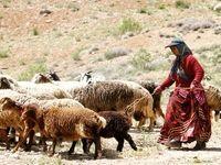 تنش آبی در مناطق مهم عشایرنشین