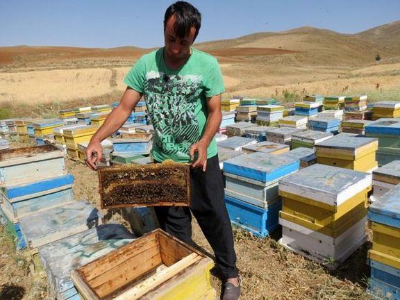 ارائه ۹۰میلیارد تومان تسهیلات ارزان قیمت به زنبورداران