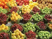 اختلاف 400درصدی قیمت در سوپر میوههای تهران با میادینترهبار!
