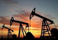 تولید نفت کنگو ۲۵درصد رشد کرد