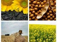 عرضه محصولات کشاورزی در بورس، زمینه قیمتگذاری عادلانه/ رشد کیفی محصولات از دیگر مزایای این اقدام