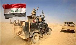 داعشیها به خودسوزی متوسل شدند
