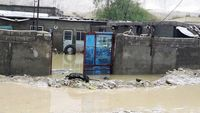خسارت سیل و طغیان رودخانهها در جنوب استان بوشهر +عکس