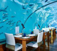 رستوران آبی مالدیو! +تصاویر