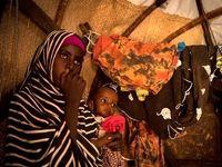 تعداد گرسنگان جهان افزایش یافت