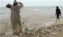 صید ماهیان استخوانی دریایخزر از  ۲۰مهر آغاز میشود