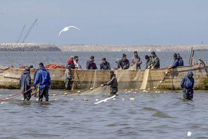 آخرین روزهای فصل صید ماهی در دریای خزر +تصاویر