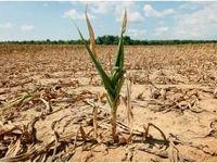 هشدار موسسه تحقیقات آب در مورد پاییز کمبارش امسال