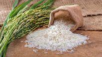 مروری بر جزییات معاملات گواهی سپرده برنج در بورس کالا