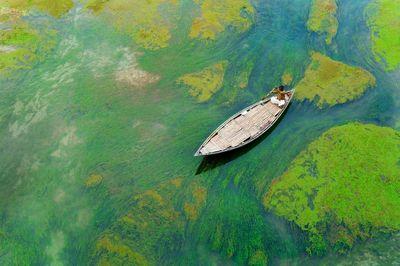 پارو زدن بر رودخانه سبز در عکس روز نشنالجئوگرافیک +عکس