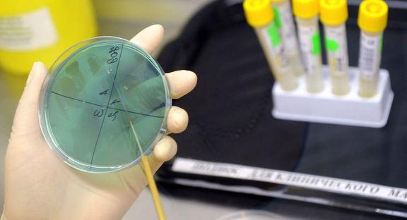 مشاهده دو نوع جدید آنفلوانزا در چین