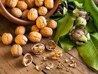 کاهش ابتلا به دیابت با مصرف «گردو»