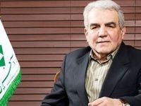 تعداد شرکتهای بیمهای در ایران با توجه به بازار موجود زیاد است/ عمده فروش بیمهنامه شرکتهای بیمهای در دو رشته زیانده اجباری است