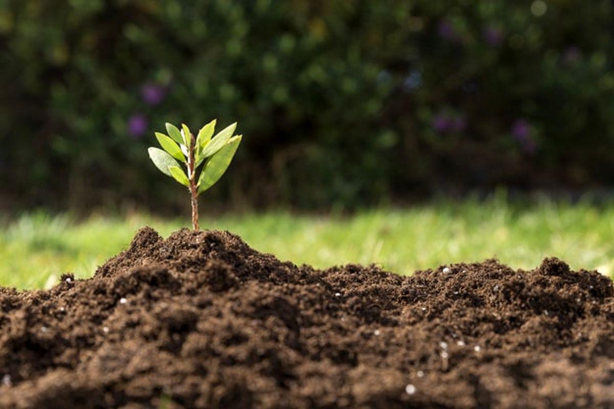 تکلیف مجلس به سازمان محیط زیست برای شناسایی واحدهای آلاینده خاک