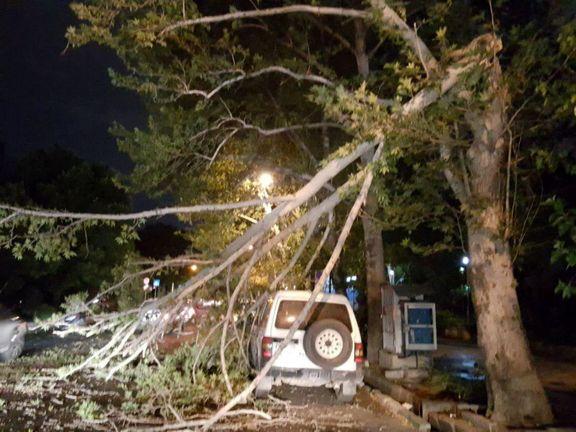 مصدومیت ۱۸نفر در پی وقوع توفان در تهران +عکس