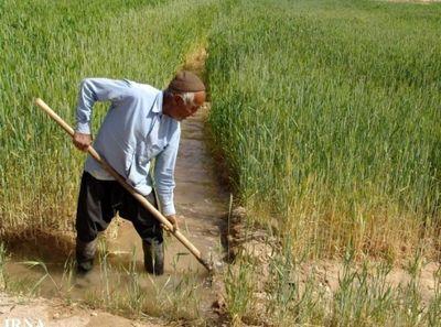 دلیل پایین بودن اشتغال در حوزه کشاورزی