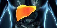 کشف راهکار جدید برای مقابله با سرطان کبد