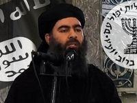 داعش بار دیگر با ابوبکر البغدادی بیعت کرد!