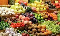میوه های تابستانه و نوبرانه، فعلا کیفیت ندارند
