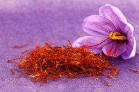 تولید ۹۰درصد زعفران دنیا در ایران