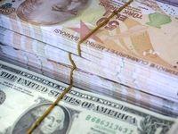 لیر ترکیه در مقابل دلار ۵درصد افزایش یافت