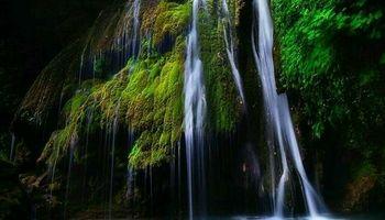تنها آبشار خزهای ایران +عکس