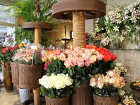 گرانی سرسام آور ملزومات دسته گل/ بهزودی شهرها خالی از گلفروشان میشوند